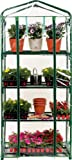 Misco Modern Indoor Lightweight Clear Plastic Four Shelf Mini Greenhouse, 19 x 27 x 63 Inches, Clear