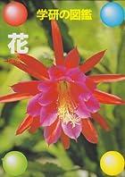 花 (学研の図鑑)