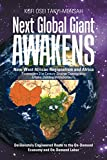 img - for Next Global Giant Awakens: New West African Regionalism and Africa book / textbook / text book
