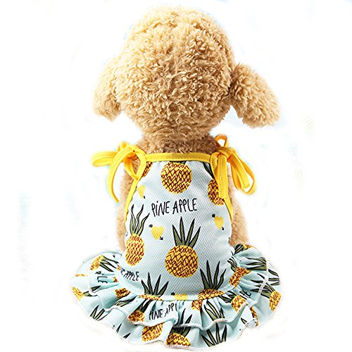 (BBEART Pet Clothes,Lovely Summer Fruit Dog T-Shirt Puppy Clothes Dog Skirt Dress Cats Clothes for Small Dogs Cats Puppy (L-Back Length 35cm, Pineapple Skirt))