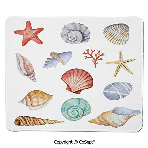 Ergonomic Mouse pad,Collection of Different Type Seashells Scallop Mollusk Summer Exotic Creatures Animals,for Computer,Laptop,Home,Office & Travel(15.74