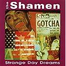 Strange Day Dreams