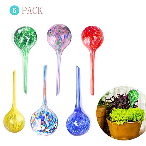 s Automatic Self-Watering Glass Globes Bulb Plant Dispenser Aqua Indoor Mini Waterer Decorative (6) ()