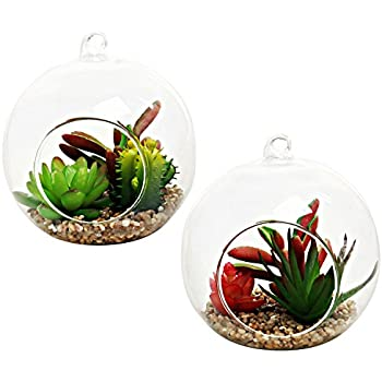 Amazon.com: MyGift Decorative Artificial Succulent Plants