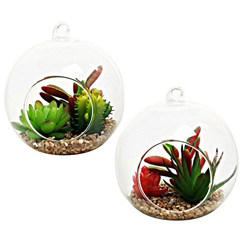 Decorative Artificial Succulent Plants In Hanging Clear Glass Globe Planter Terrarium  Set Of 2