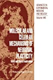 Molecular and Cellular Mechanisms of Neuronal Plasticity : Basic and Clinical Implications, , 1461372097