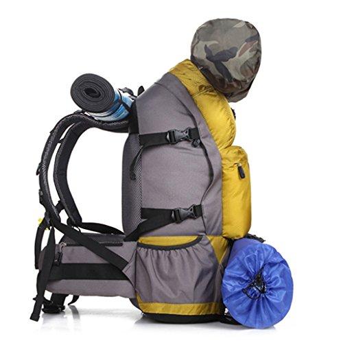 Im Freienbergrucksackbeutel Männer und Frauen reisen Tasche Wandern Camping Rucksack 50L Blau