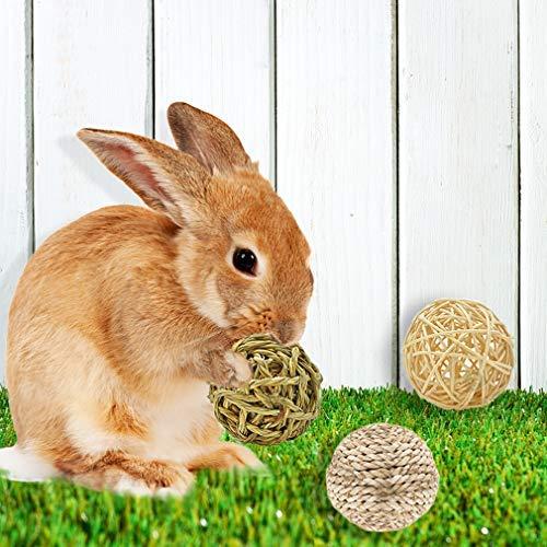Buy bunny ball toy