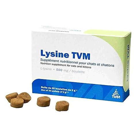 TVM - Suplemento alimenticio de lisina para gatos (tratamiento contra herpesvirus felino/coriza)