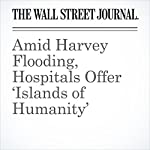 Amid Harvey Flooding, Hospitals Offer 'Islands of Humanity' | Melanie Evans,Joseph Walker,Peter Loftus