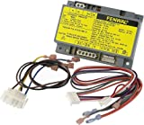 Pentair 472449 Module Ignition Control Replacement MiniMax NT TSI...