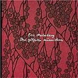 Den Gatfulla Maenniskan by Eric Malmberg (2006-01-01)