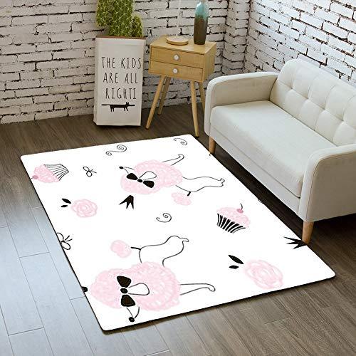 iBathRugs Door Mat Indoor Area Rugs Living Room Carpets Home Decor Rug Bedroom Floor Mats,Princess Poodle Dog ()