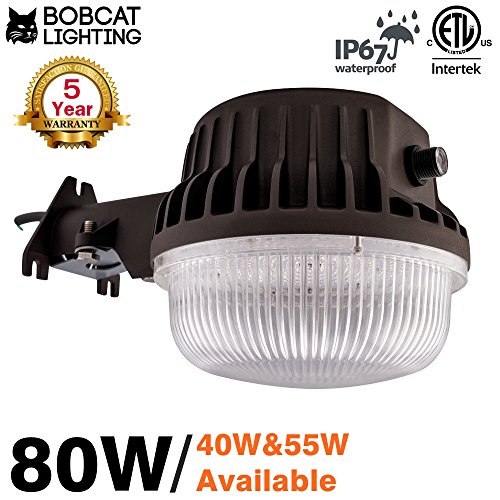 80 Watt Led Light
