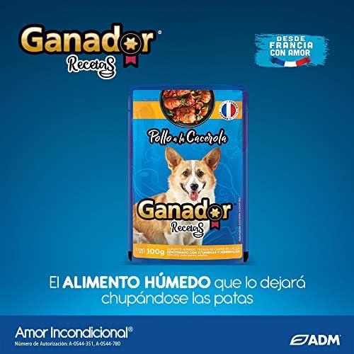Ganador Bundle: 1 Ganador 15kg con 22 Ganador Recetas de 100 g c/u para Perros Adultos de Razas Medianas y Grandes, Azul 6
