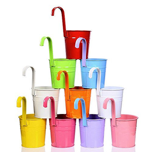 10 pack flower pots - 6