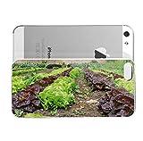 iPhone 5S Case SustainabieLivimg Kinvara SustainabieLivimg Sustainability Hard Plastic Cover for iPhone 5 Case