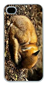 designcover fox puppy sleep PC White Case for iphone 4/4S