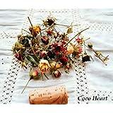 ~Coco Heart~ ミニバラヘッド25本セット  (木の実・ドライフラワー)