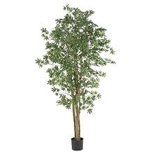 Nearly Natural 5297 Japanese Maple Silk Tree, 6-Feet, Green