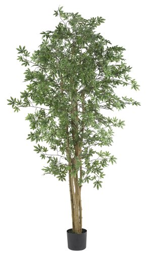 Nearly Natural 5297 Japanese Maple Silk Tree, 6-Feet, Green ()