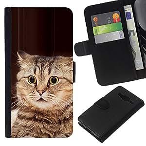 eJoy---La carpeta del tirón la caja de cuero de alta calidad de la PU Caso protector - Samsung Galaxy Core Prime - --Playing Cat American Bobtail Manx Brown