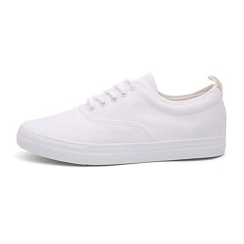 Zapatos de Lona BOBOLover, Zapatos Casuales de Hombre ...