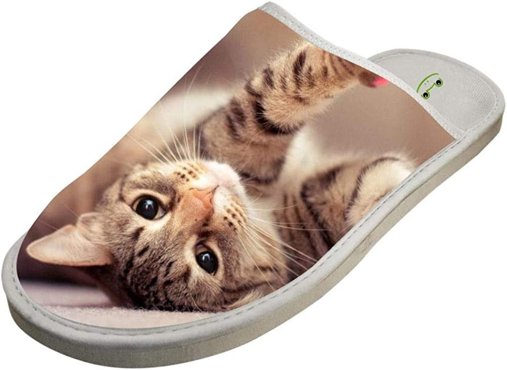 KOUY Spoiled Cat Closed Toe Cotton Slippers Warm Soft Indoor Shoes Non-watertight