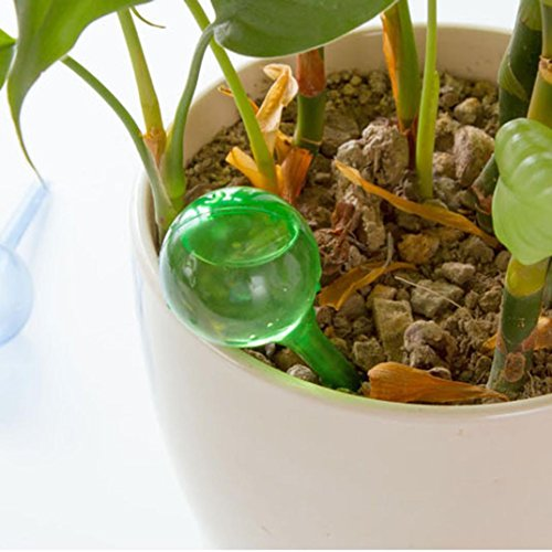 LiPing Automatic Watering Device Houseplant Plant Pot Bulb Globe Garden House Waterer, Self Plant Watering Devices for. (Large, Clear) by LiPing (Image #3)