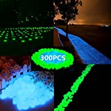 chic style Glow in the dark Garden Pebbles, 300pcs Gardening Luminous Glow Stones Outdoor Decor Glowing Water Fish Tank Gravel (blue green)