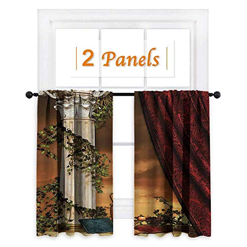 shenglv Gothic Decor Curtains by Greek Style Scene Climber Pillow Fruits Vine and Red Curtain Ancient Figure Sunset Room Darkening Wide Curtains W63 x L45 Multicolor