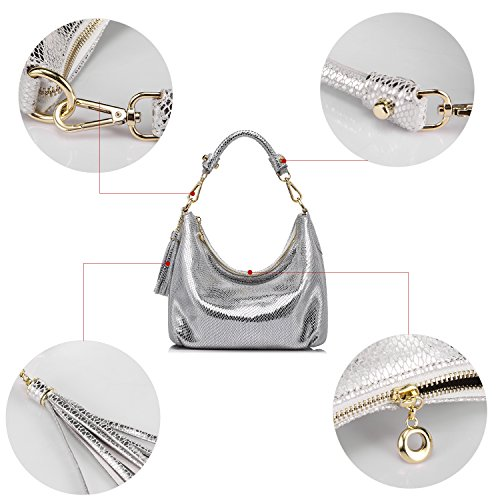 Small Cross Bag Handbags Body Shoulder Leather Tassels Silver Womens Ladies Hobo With CSW5x4qw