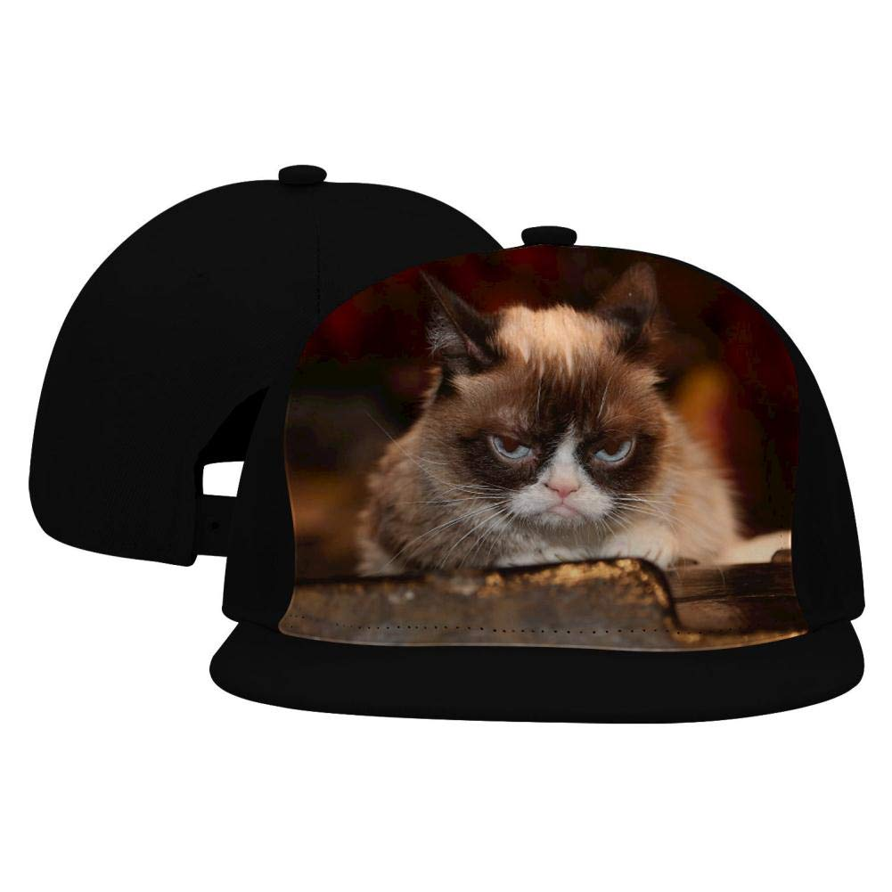 Chario Grumpy Cat Adult Baseball Cap All Cotton Made Hat Adjustable Fits Men Women