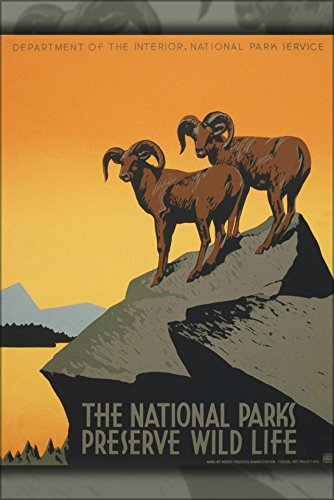 24x36 Poster; The National Parks Preserve Wild Life, Wpa Poster, Ca. 1938