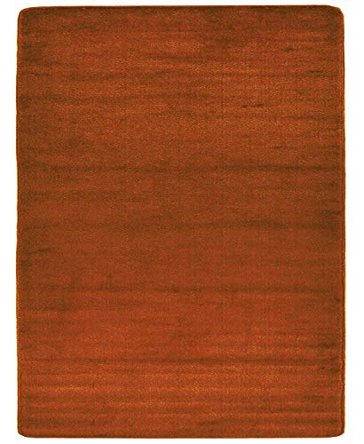 Euro Collection Solid Color Area Rug Rugs Slip Skid Resistant Rubber Backing Machine Washable More Color Options Available (Burnt Orange, 3'3