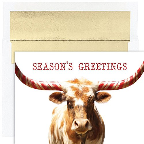 Mint Set Envelope - JAM Paper Christmas Card Set - Peppermint Longhorn Holiday Cards - 18 Cards & Envelopes/Pack