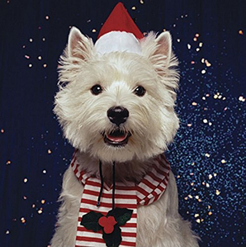 Westie Charity Christmas Cards Pack of 5 West Highland White ...