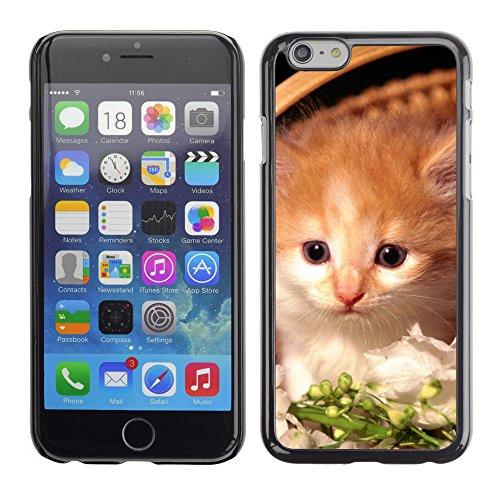 """Premio Sottile Slim Cassa Custodia Case Cover Shell // V00003204 chaton mignon dans le panier // Apple iPhone 6 6S 6G 4.7"""""""