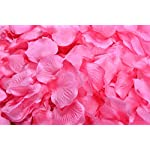 La-Tartelette-Silk-Rose-Petals-Wedding-Flower-Decoration-2000-Pcs-Hot-Pink
