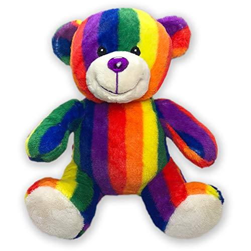 Rainbow Teddy Bear by RGU (9