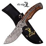 Elk Ridge ER-560WD 3mm Damascus Fixed Blade Knife, Maple Wood, 8.75″ Review