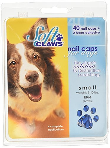 Canine Soft Claws Dog Nail Caps Take Home Kit, Small, bluee by Soft Claws