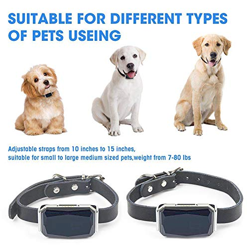 Waterproof OEM ODM Pet Dog Real-time GPS Tracker with Free Leather Collar Support APP Web SMS Tracking System for Dog Cat Tracking Kid The Elder and Things Tracking