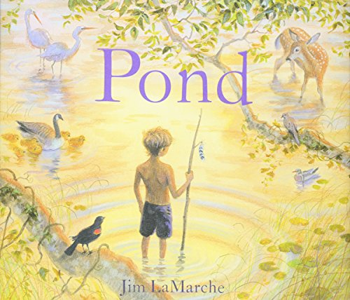 Pond por Jim LaMarche