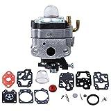 HIPA 753-1225 Carburetor with Carburetor Repair Kit for Troy-Bilt TB415CS TB465SS TB475SS TB490BC Yard Man YM21SS YM26SS YM26BC YM26CS Trimmer