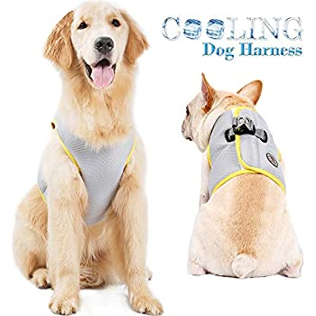 FOREYY Dog Cooling Harness for Outdoor Adventure Training Walking, Breathable Pet Cooler Vast Jacket Clothes for Small Medium Large Dogs (L)