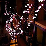 Quntis Christmas Fairy String Lights Pretty LED Decorations Circle Globe Lights for Room Bedroom Bed Outdoor Garden Window Party Home Indoor Outside Backyard and Patio(White and Pink)
