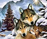 Best Harmony Pc Brands - Wolves in Harmony 1000 pc Jigsaw Puzzle Review