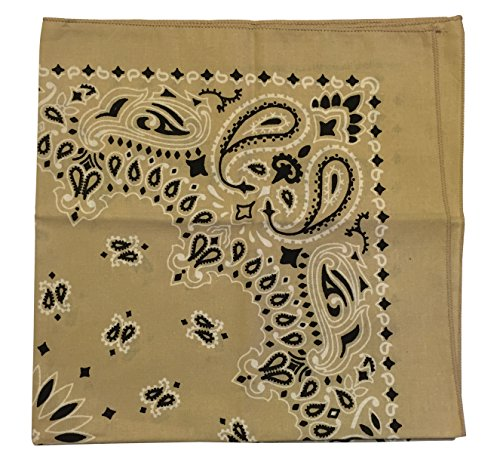 Trainmen Bandana - USA Made Military Army Trainmen Paisley 22
