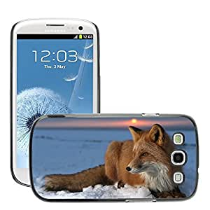 Hot Style Cell Phone PC Hard Case Cover // M00047321 animals fox ice wild animal // Samsung Galaxy S3 i9300
